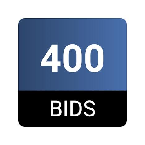 400 bid pack on www.dealdash.com