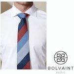 Bolvaint - Tabit Autumn Stripe Silk Tie