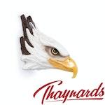 Thaynards - Glo-Wild Night Lights – American Eagle